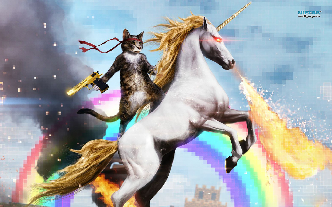 Cat riding a unicorn - image #1929194 by Maria_D on Favim.com